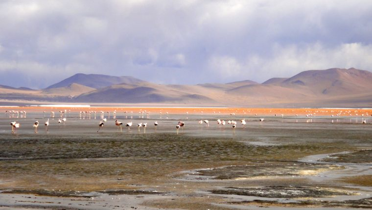 Why Bolivia Should Be On Your Bucket List